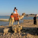 Luksusrejse til Egypten